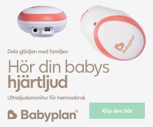 Ultraljudsmonitor för hemmabruk